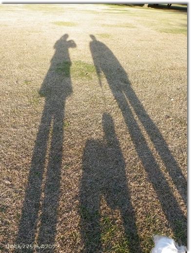 2012 海浜公園散歩 030