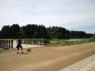 夢の森公園
