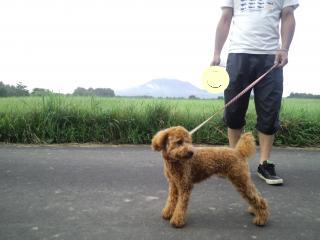 浅間山です。