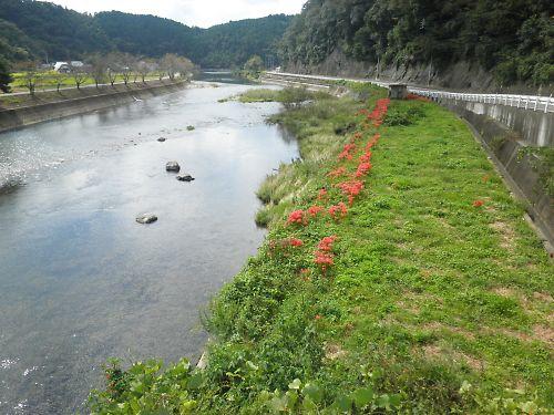 20111002Awakura066s