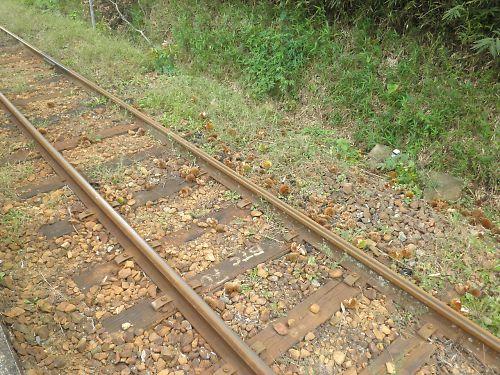 20111002Awakura076s