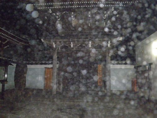 20111104Sakazuki003s