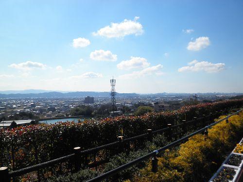 20120219Shirasaki002s