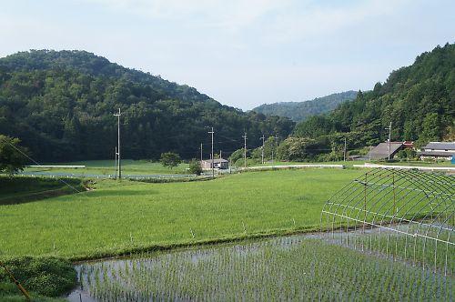 20120710HokusetsuS015s
