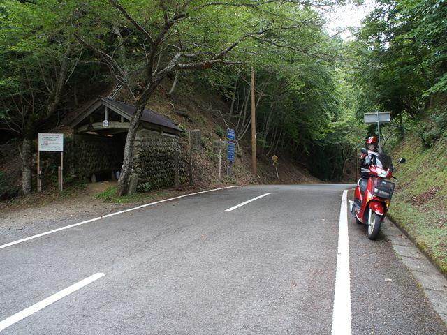20120812AsyuS001s