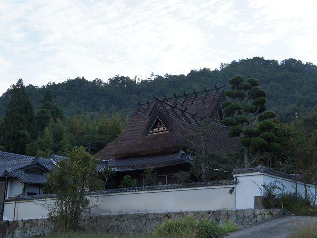 20121013KohukuS032s