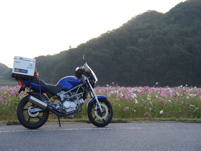 20121016OharaS027s