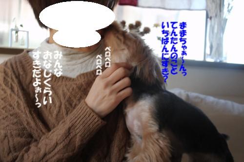 IMG_2296_201312072041479c4.jpg