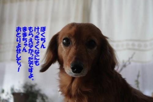IMG_3258.jpg