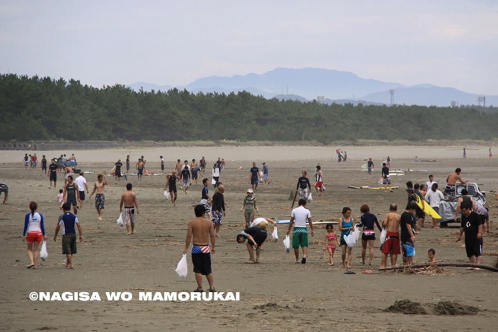 2011029-ウミガメ1