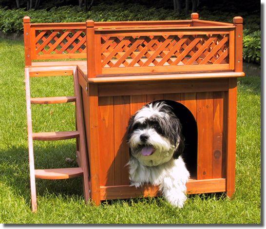 豪華犬小屋2