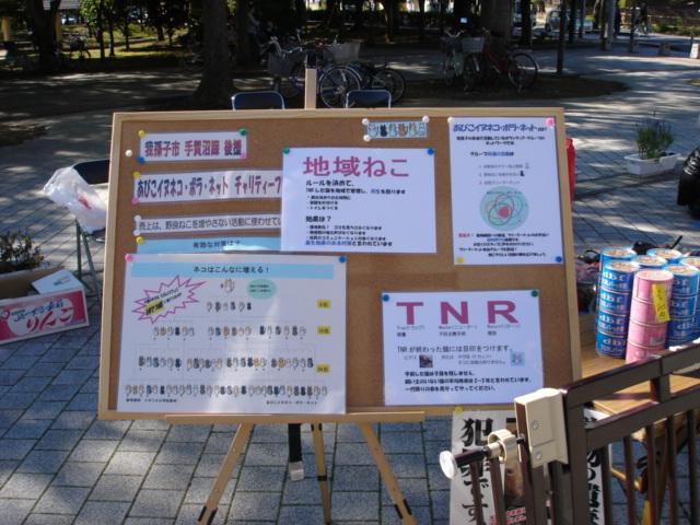 手賀沼公園 アビスタ前広場