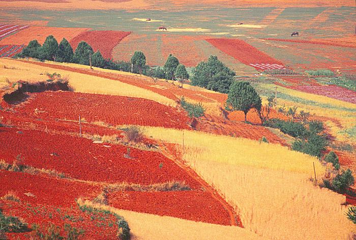 08赤い土