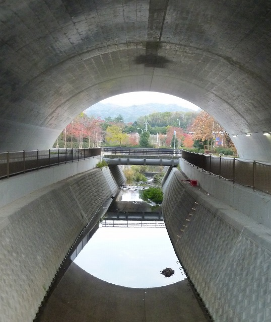 寝屋川公園33