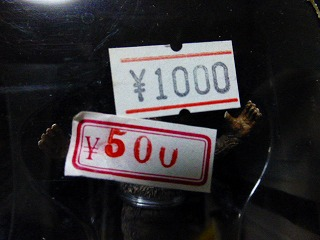 P1000570.jpg