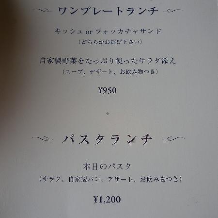 P1170134-s.jpg