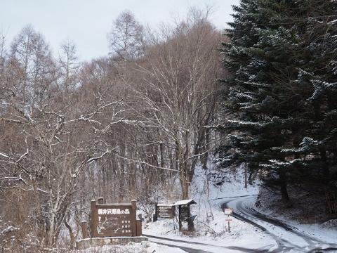 野鳥の森入口141206