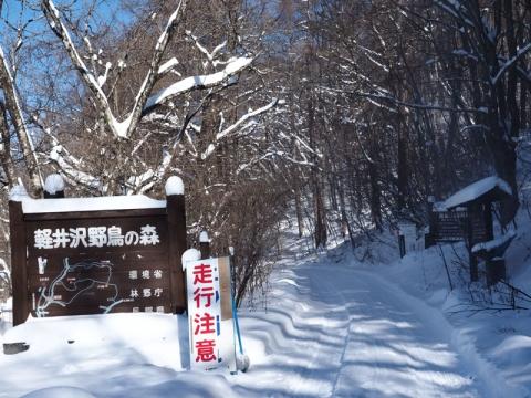 野鳥の森入口141218