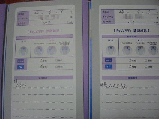 ぽんよー&かおしん2012070603