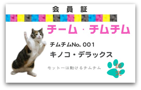 チームチムチム-kinoko2