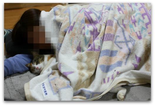 奇跡の添い寝-0226