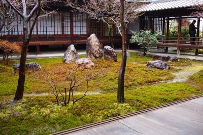 P3052305-garden.jpg