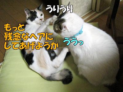111001-01.jpg