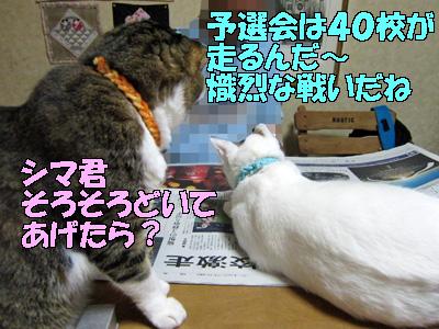 111014-04.jpg