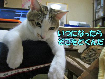 111212-07.jpg