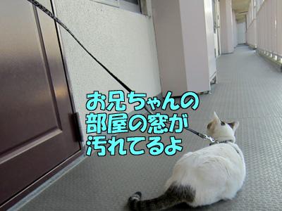 111229-12.jpg