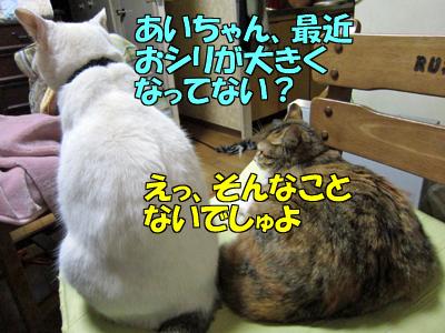 120216-03.jpg