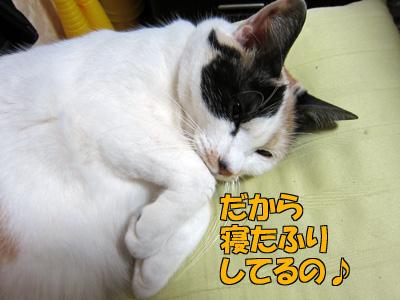 120312-09.jpg