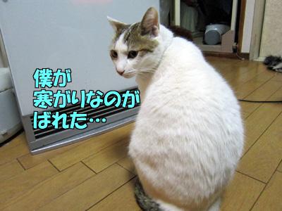 120317-02.jpg