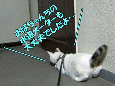 120517-08.jpg