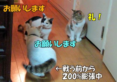 120703-03.jpg