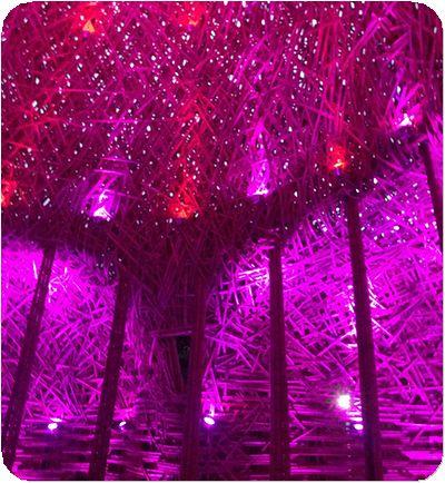 碧湖織屋壁紫