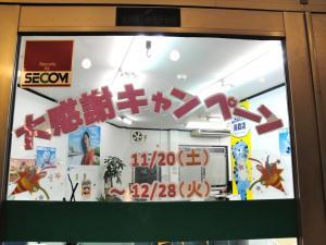 DSC00009_convert_20101119174804.jpg