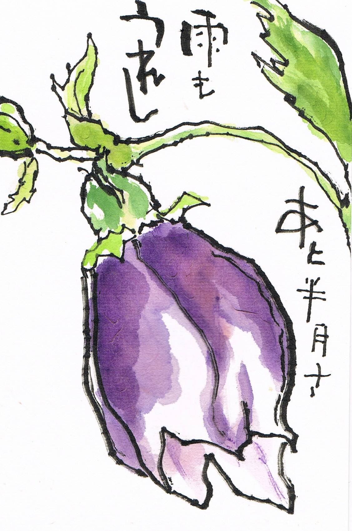 土井垣蛍袋