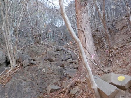 141122高岩 (5)s