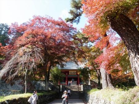 141123妙義神社s