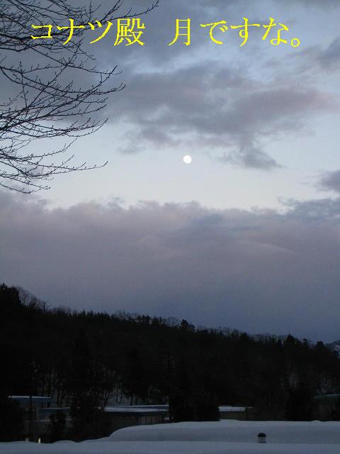 月ですな。