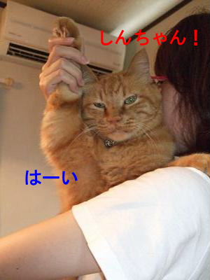 2010_08180030.jpg
