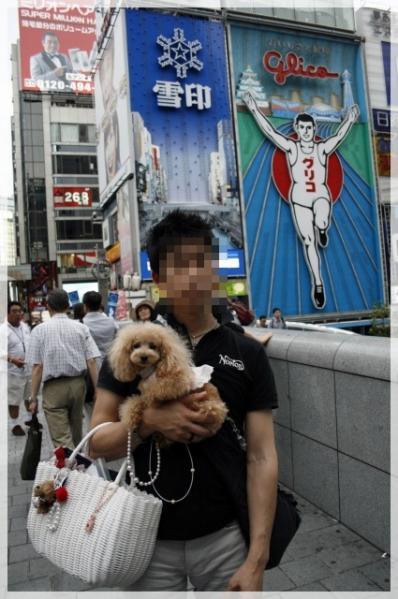 10_20101124124615.jpg