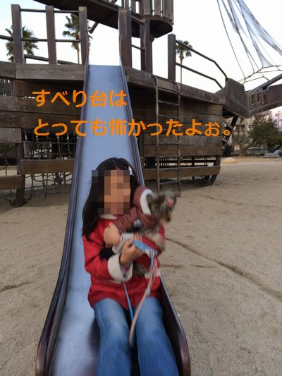 IMG_3532.jpg