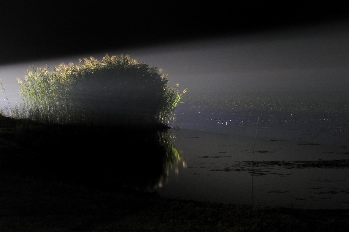 夜のさぎ9.18 062-2-s