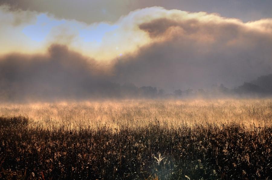 霧の朝11_tonemapped-2-2j-ss