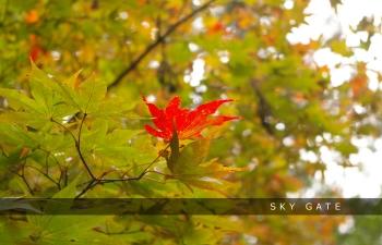 2014_11_09_02.jpg