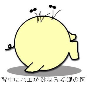 ojiro3.jpg