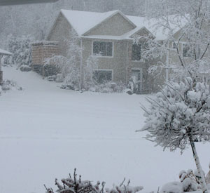 snow1113102.jpg