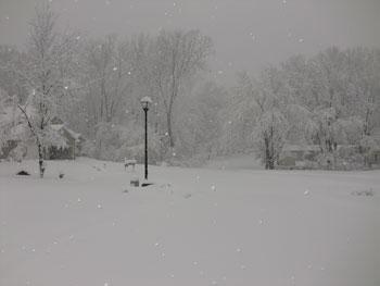 snow1113103.jpg